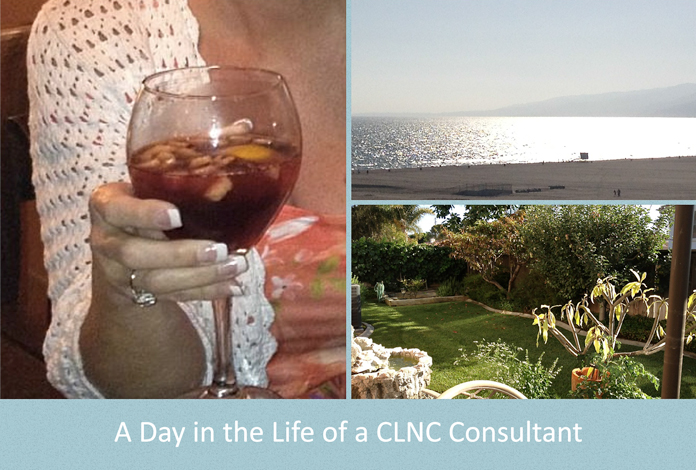 3-27-14-a-day-in-the-life-of-a-clnc-consultant