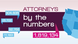 Number of attorneys for legal nurse consultant jobs