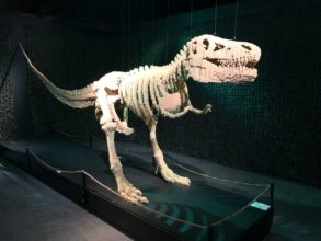 T-Rex - The Art of the Brick
